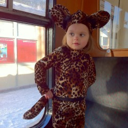 stretch velour mouse costume