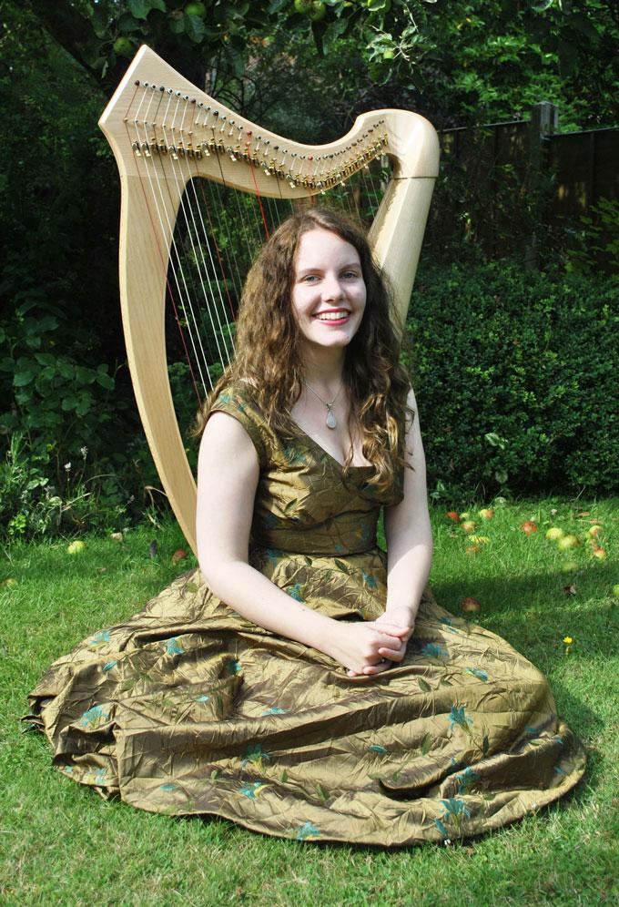 embroidered poly taffeta harp dress