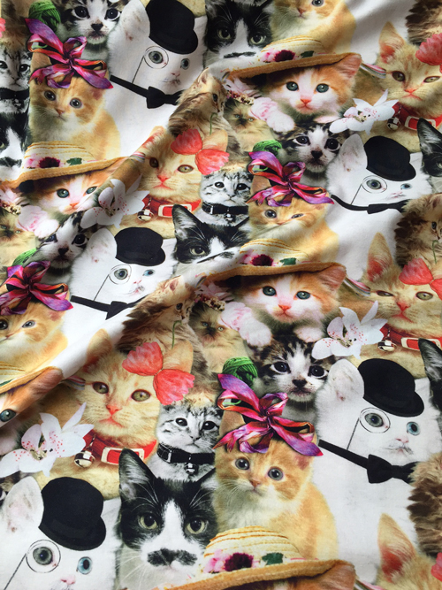kitsch cat print cotton and elastane jersey