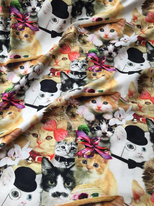 kitsch cat print cotton and elastane jersey
