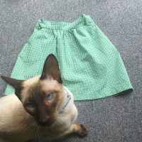 siamese kitten and green gingham school skirt