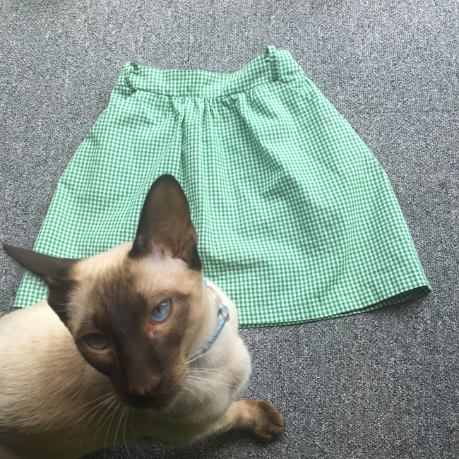 siamese kitten and green gingham school skirt