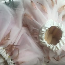 Pale pink tulle ballerina tutus with feathers