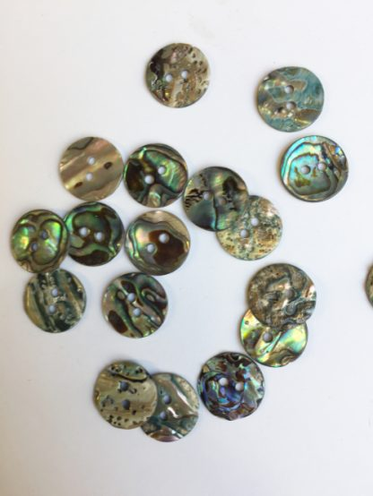 abalone shell 2 hole button