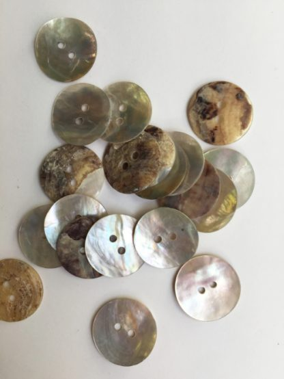 natural shell 2 hole button